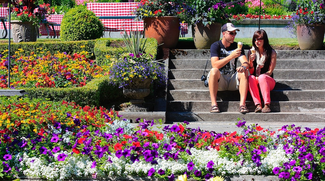 Butchart Gardens showing a park as well as a couple
