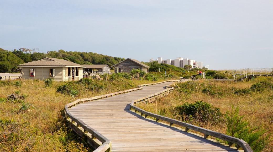 Myrtle Beach State Park das einen ruhige Szenerie und Haus