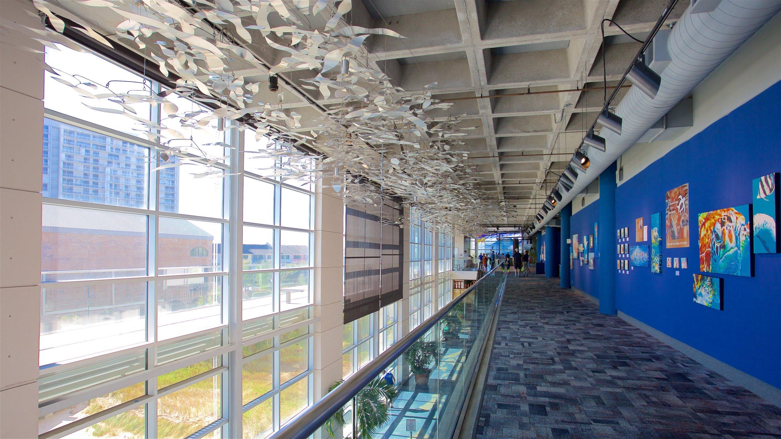 South Carolina Aquarium, Charleston, South Carolina, United States of America
