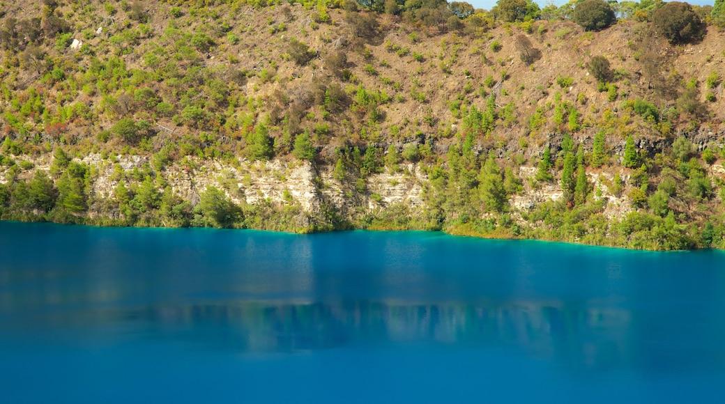 Blue Lake Reserve