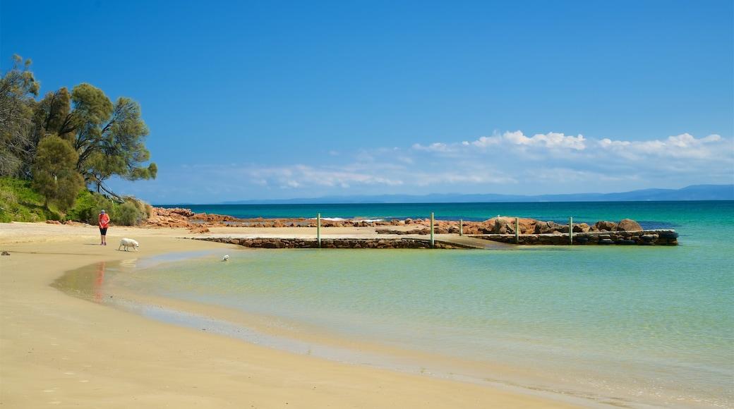 Muirs Beach