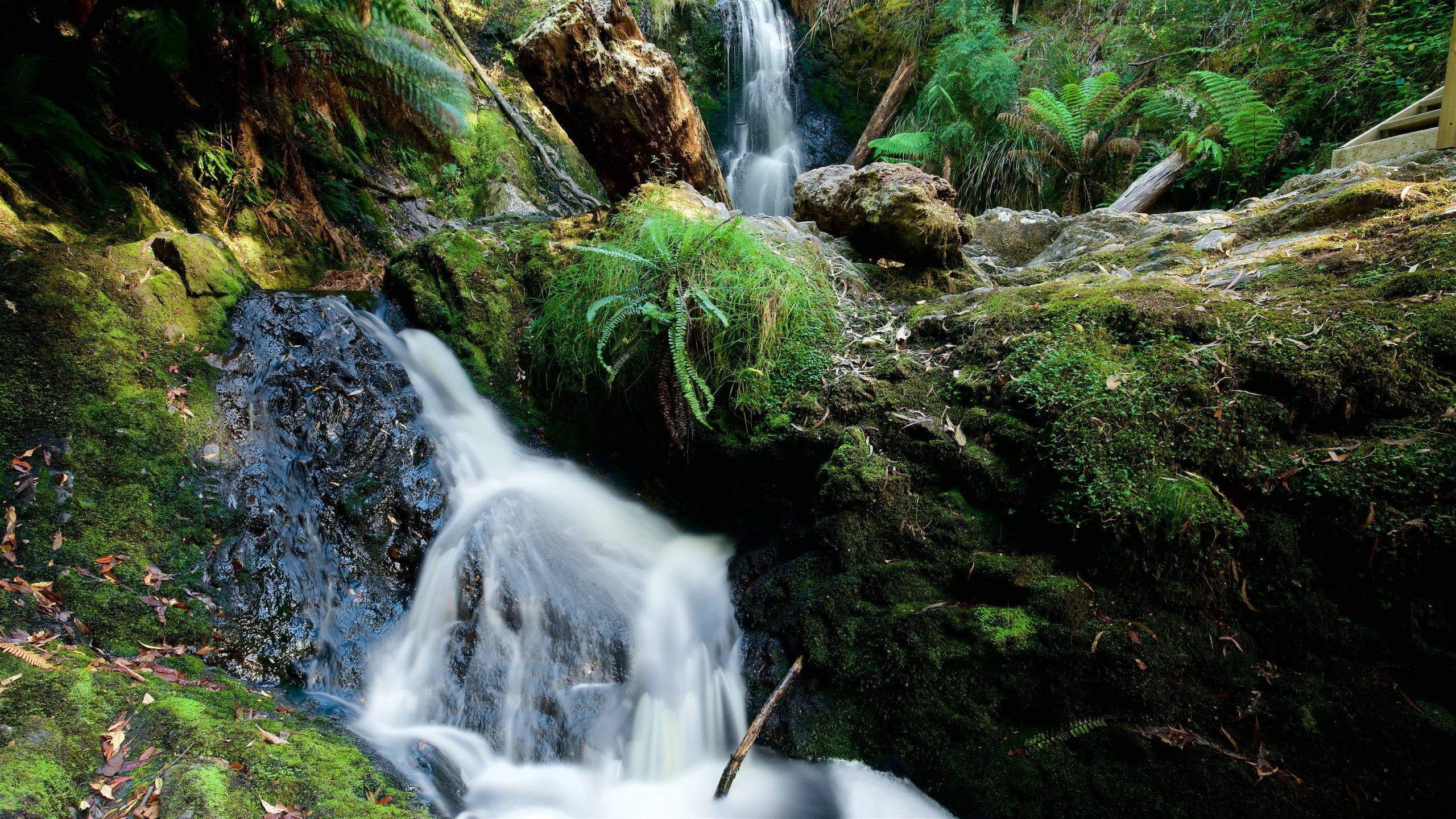 Hogarth Falls, Strahan, Tasmanien, Australien