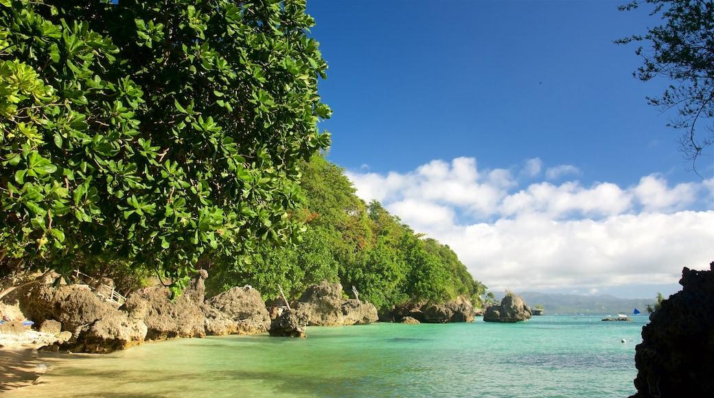 발링하이 비치 을 보여주는 암석 해안선, 항구 또는 항만 과 아열대 풍경