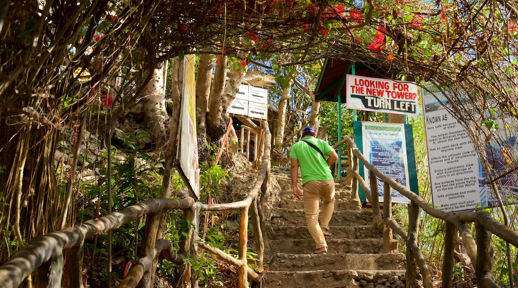 Mt. Luho featuring hiking or walking, signage and mountains
