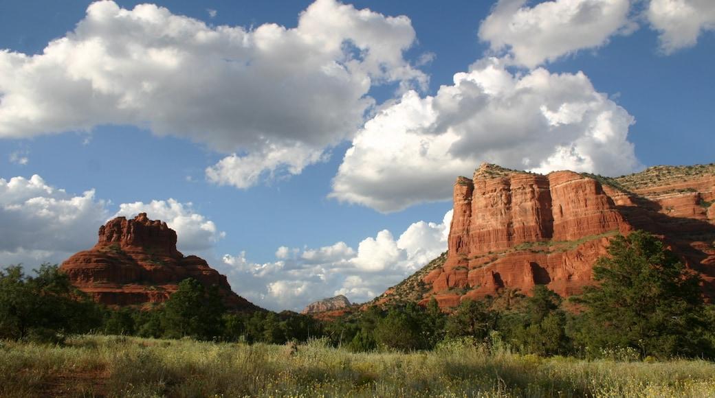 Bell Rock welches beinhaltet Wüstenblick und Berge