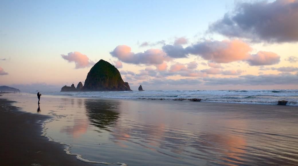 Oregon Coast featuring a sunset, island views and general coastal views