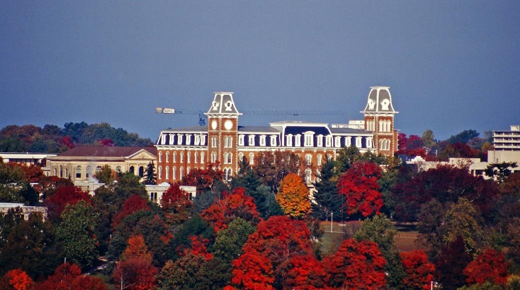 Fayetteville featuring skyline