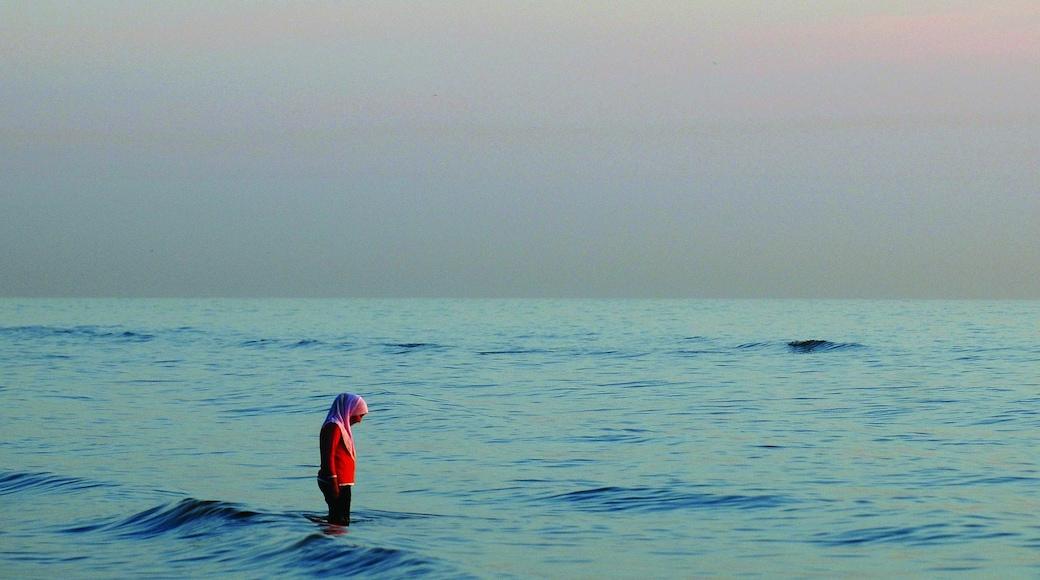 Zandvoort inclusief algemene kustgezichten en ook een vrouw