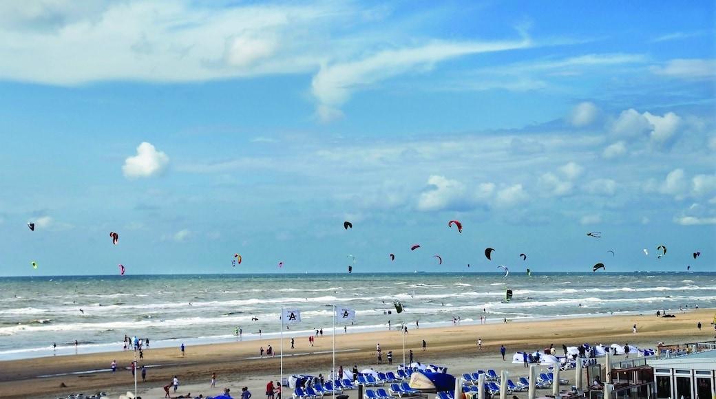 Zandvoort bevat een strand en landschappen