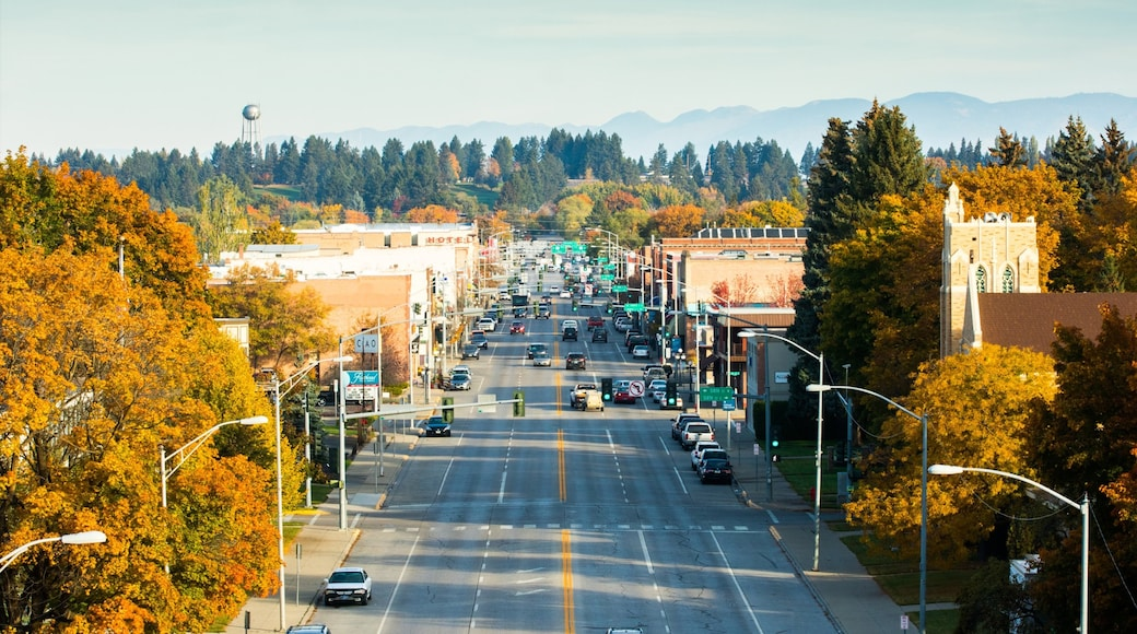 Kalispell which includes street scenes