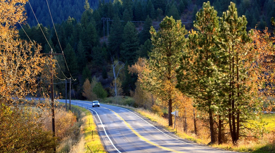 Pohjois-Idaho