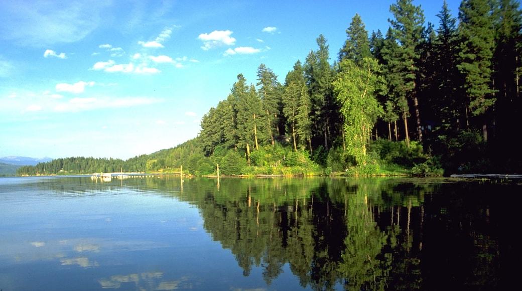 Harrison joka esittää järvi tai vesikuoppa