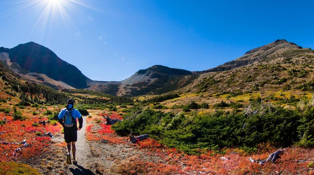 Parque Nacional de los Glaciares mostrando montañas y colores de otoño y también un hombre