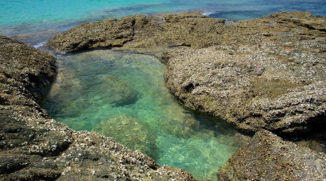 Surin Beach presenterar klippig kustlinje och en hamn eller havsbukt