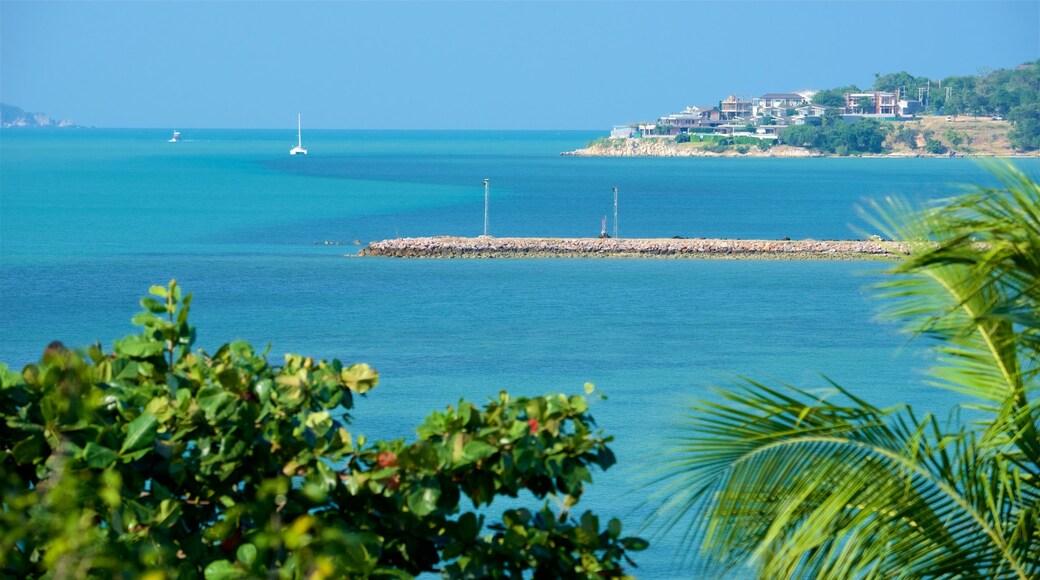 Big Buddha Beach Pier bevat ruige kustlijn en een baai of haven