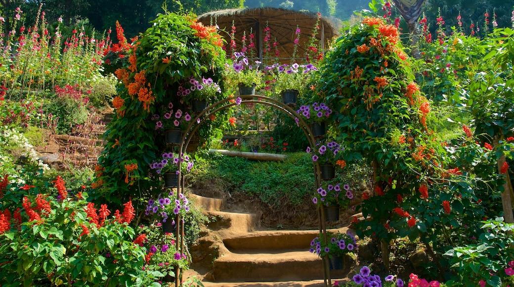 雙龍 - 貝國家公園 其中包括 公園 和 花朵