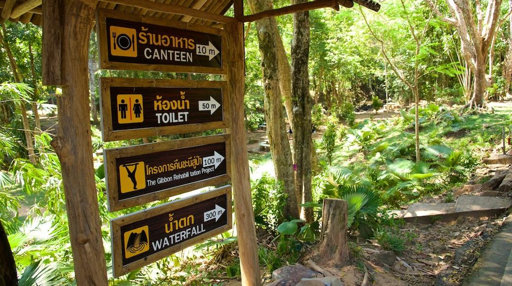 Phuket - Phang Nga featuring signage and rainforest