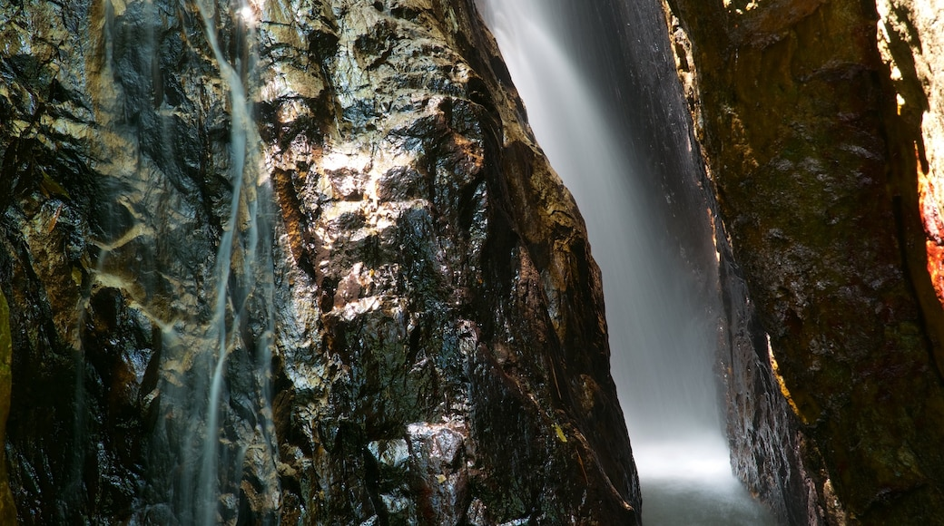 Phuket - Phang Nga which includes a cascade