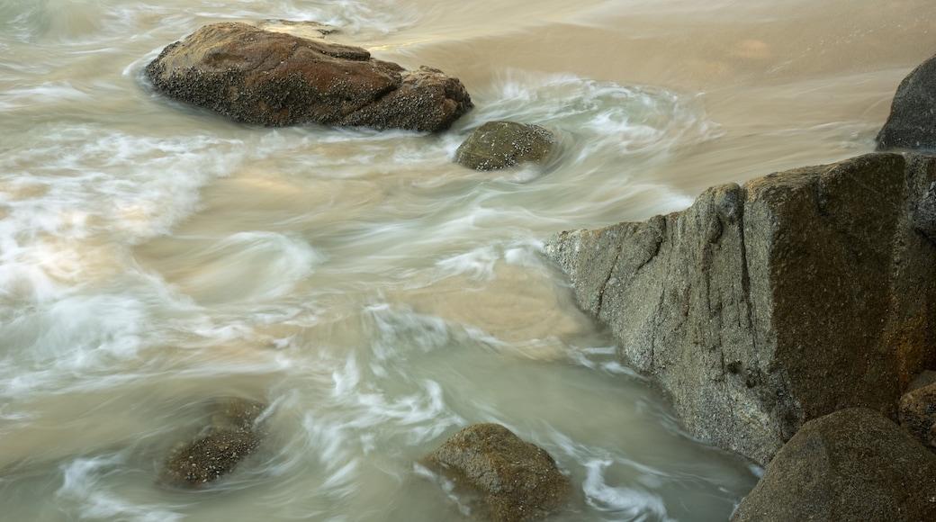 หาดฟรีดอม