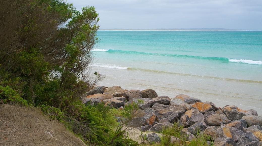 Port Fairy which includes rocky coastline