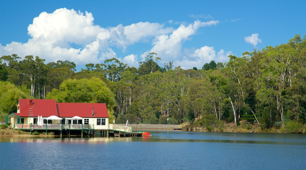 Daylesford showing a lake or waterhole and a house