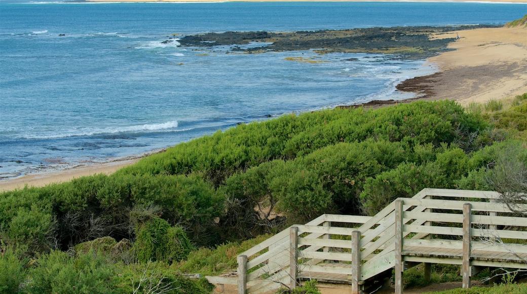 Phillip Island featuring a beach