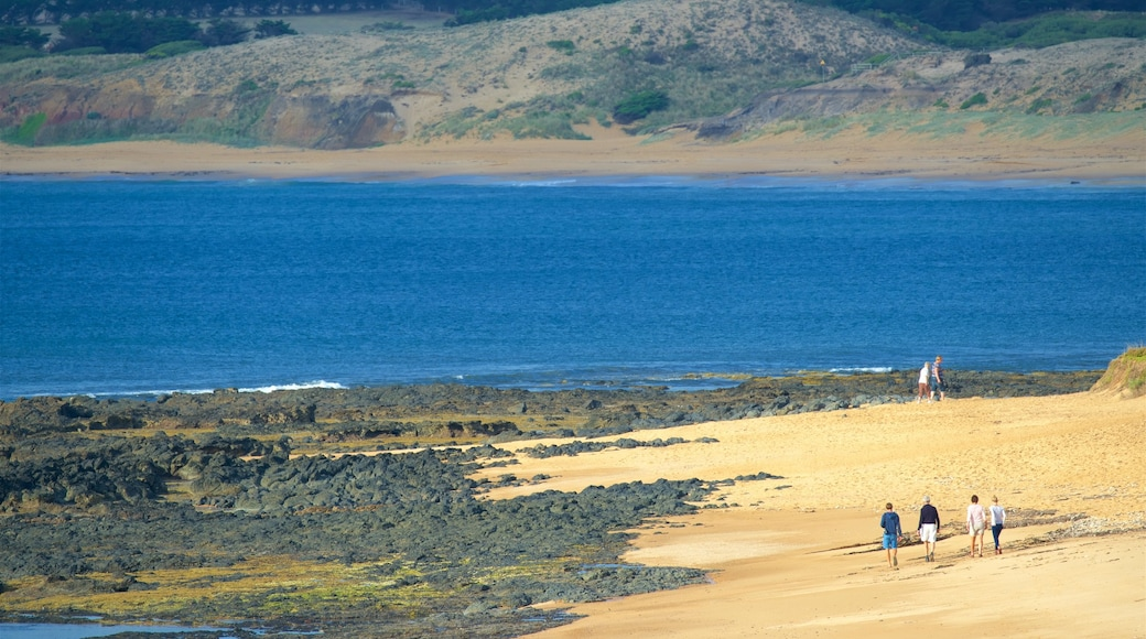 Phillip Island showing a sandy beach as well as a small group of people