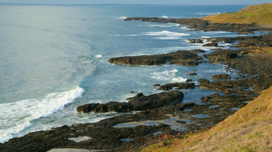 Phillip Island featuring rugged coastline