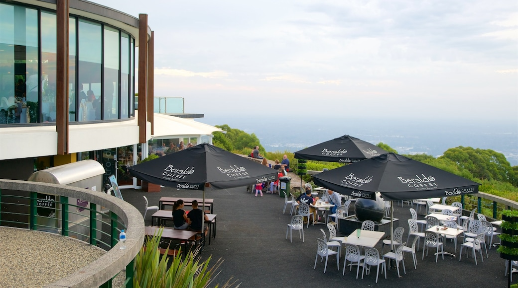 SkyHigh Mount Dandenong featuring café scenes and outdoor eating