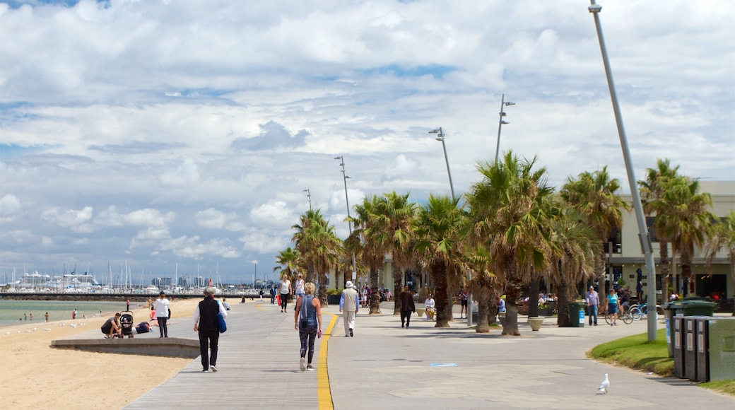 St. Kilda Beach featuring a sandy beach as well as a small group of people
