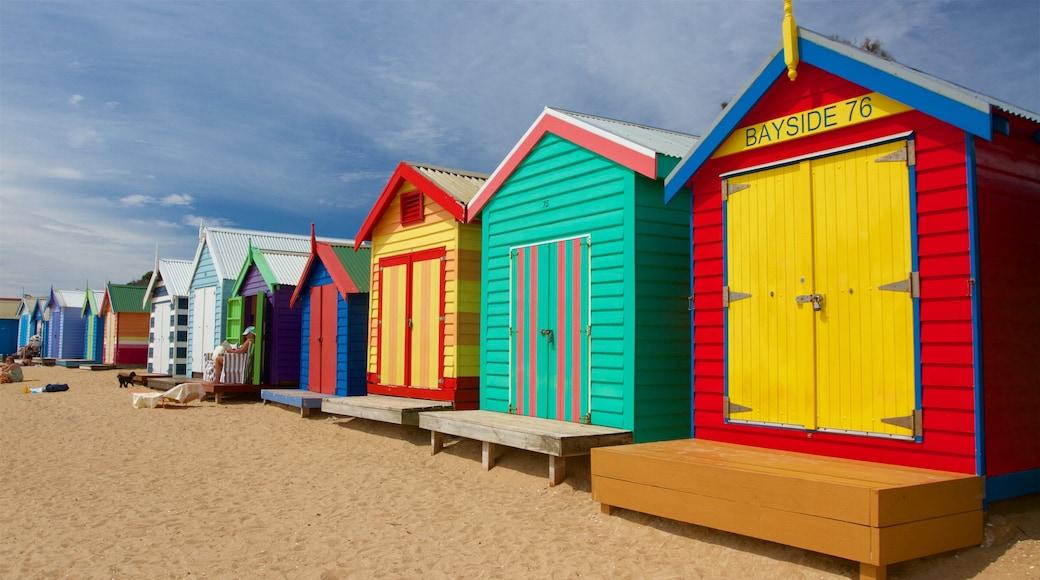 Brighton featuring a house and a beach