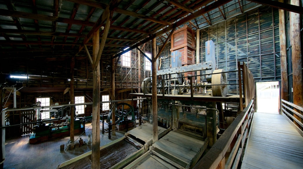 Sovereign Hill showing interior views
