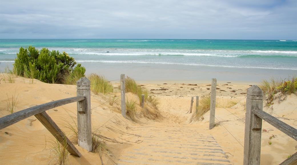 Warrnambool Beach which includes a bay or harbour, surf and a sandy beach