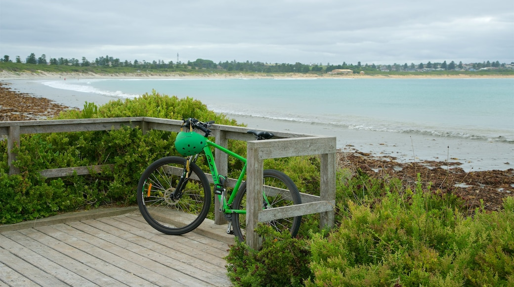 Warrnambool Beach which includes a bay or harbour, cycling and a beach