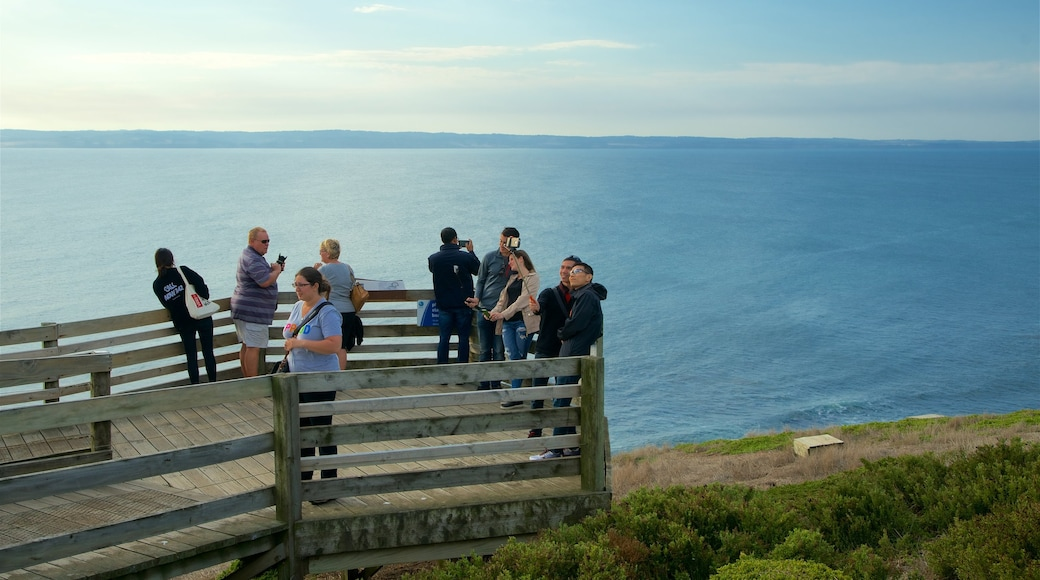 Phillip Island featuring a bay or harbour and views as well as a small group of people