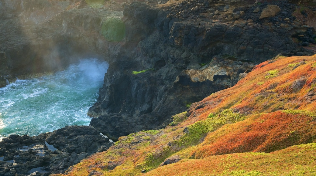 Victoria showing rocky coastline