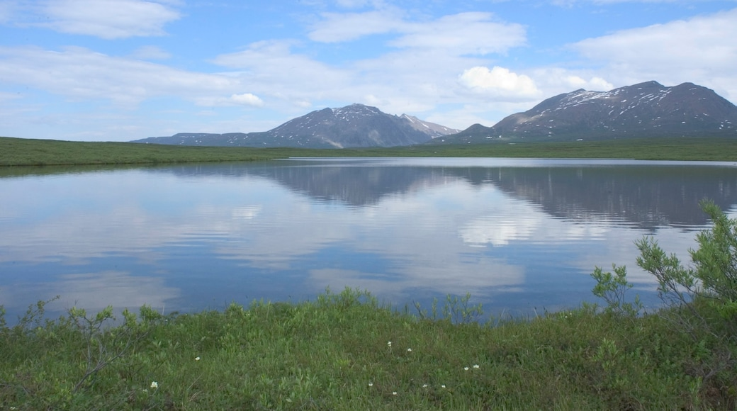 Denali which includes a lake or waterhole, tranquil scenes and mountains