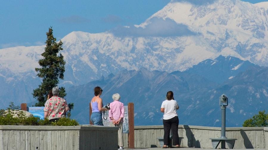 Denali montrant vues et montagnes aussi bien que petit groupe de personnes