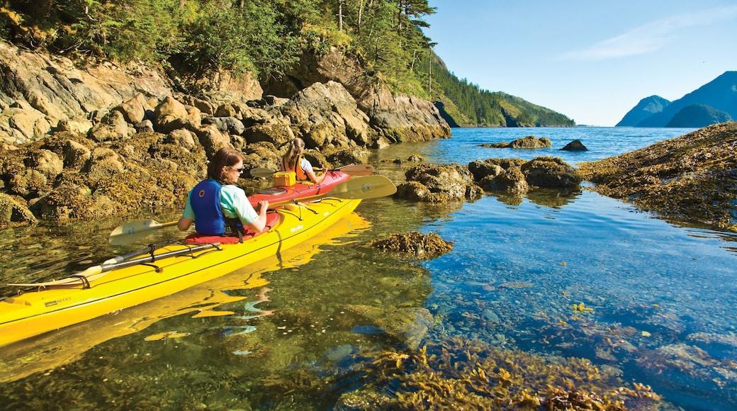 Kenai Peninsula das einen Korallen, Kajak- oder Kanufahren und See oder Wasserstelle