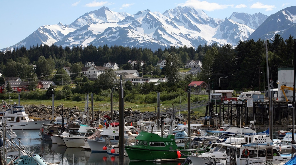 Haines which includes mountains, a bay or harbour and a marina