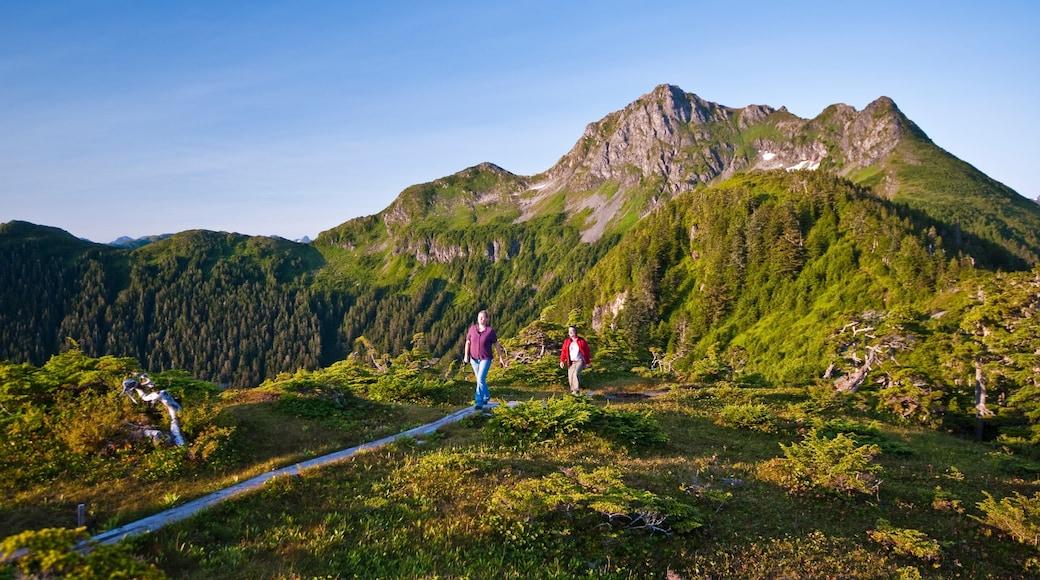 Sitka mit einem Berge und ruhige Szenerie sowie kleine Menschengruppe