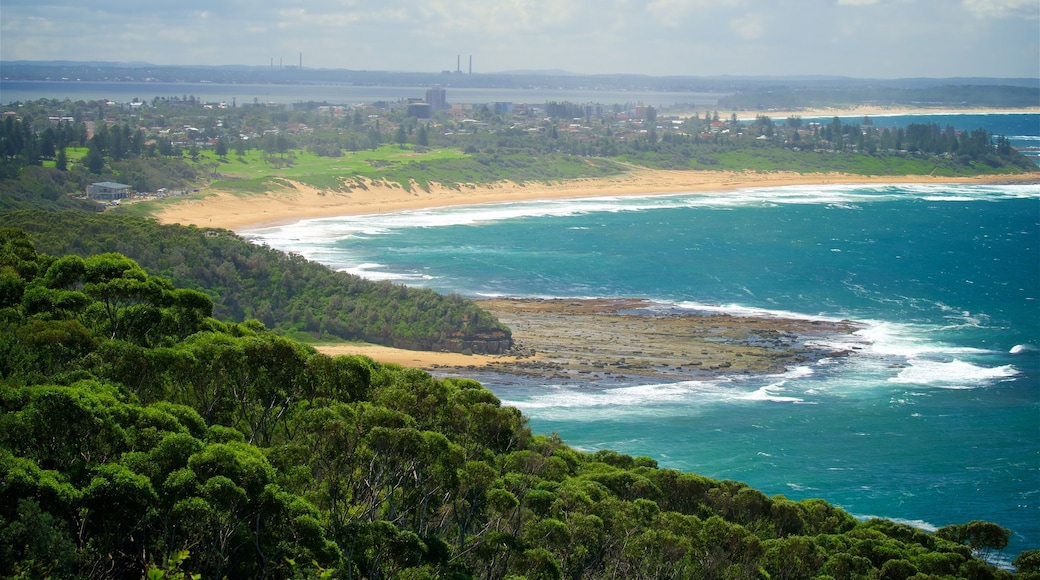 Wyrrabalong National Park showing a bay or harbour, a beach and surf