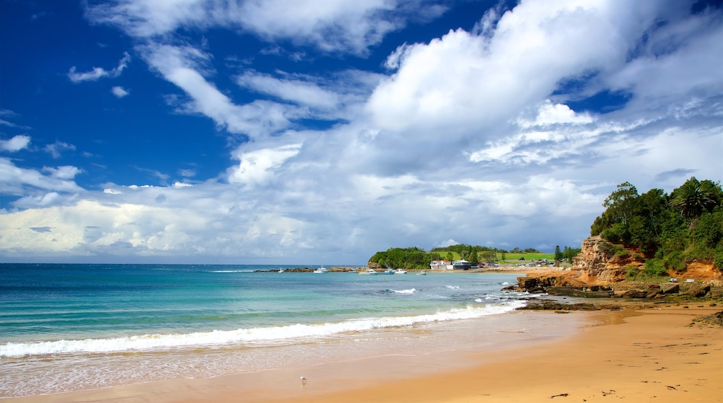 Terrigal featuring a beach and a bay or harbour