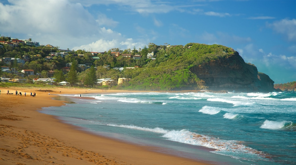Avoca Beach showing waves, a bay or harbour and a beach