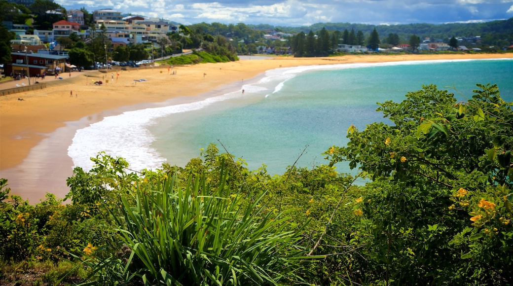 Terrigal showing a bay or harbor, a coastal town and a sandy beach