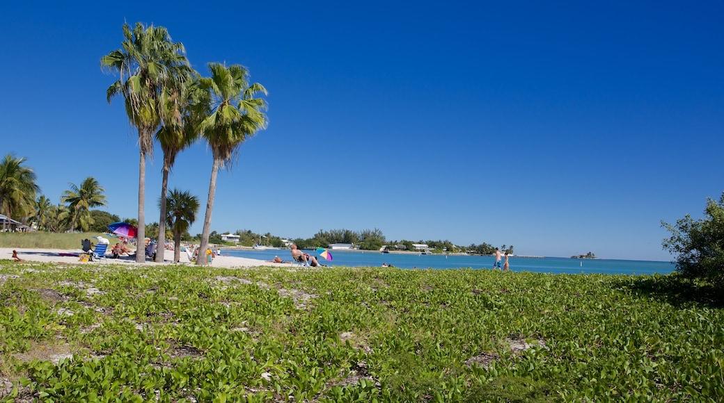 Sombrero Beach welches beinhaltet Strand und Bucht oder Hafen sowie kleine Menschengruppe