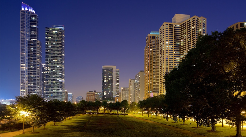 Grant Park which includes night scenes and a park