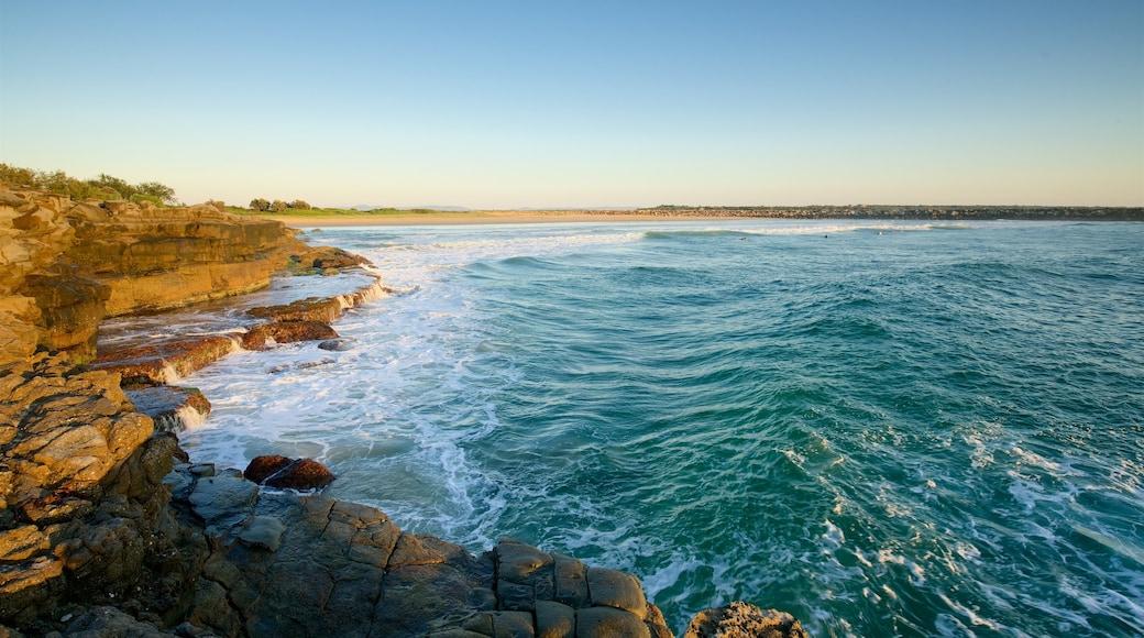 Yamba featuring rocky coastline