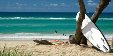 Cabarita Beach qui includes plage de sable, vagues et surf