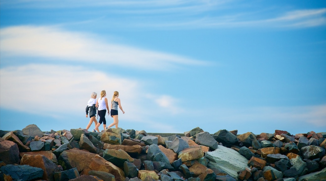 Nobbys Head Beach featuring rocky coastline as well as a small group of people
